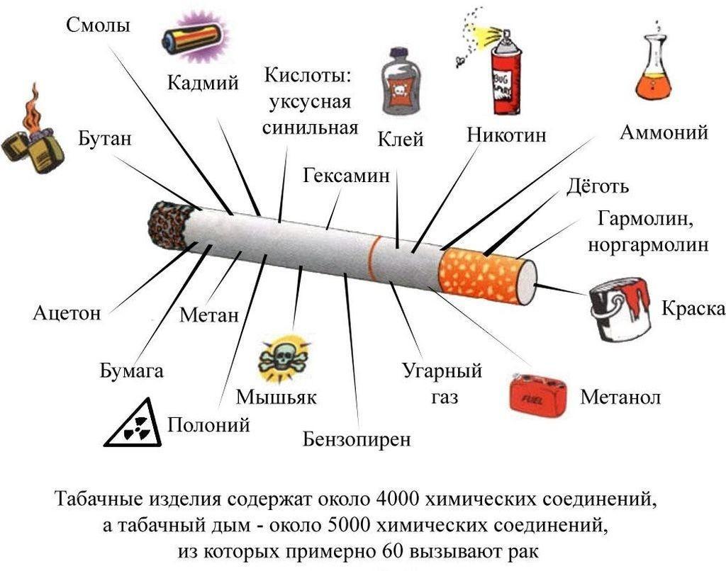 состав <strong><a href='../new/kak-kurenie-vliyaet-na-zdorove'><strong><a href='https://zdravbud.net/new/kak-kurenie-vliyaet-na-zdorove'>сигареты</a></strong></a></strong>