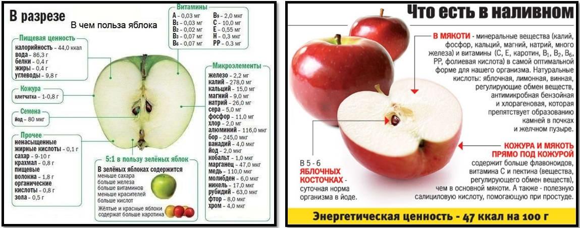 Полезно ли яблоко при похудении