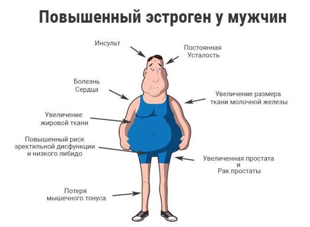 повышенный эстроген у мужчин