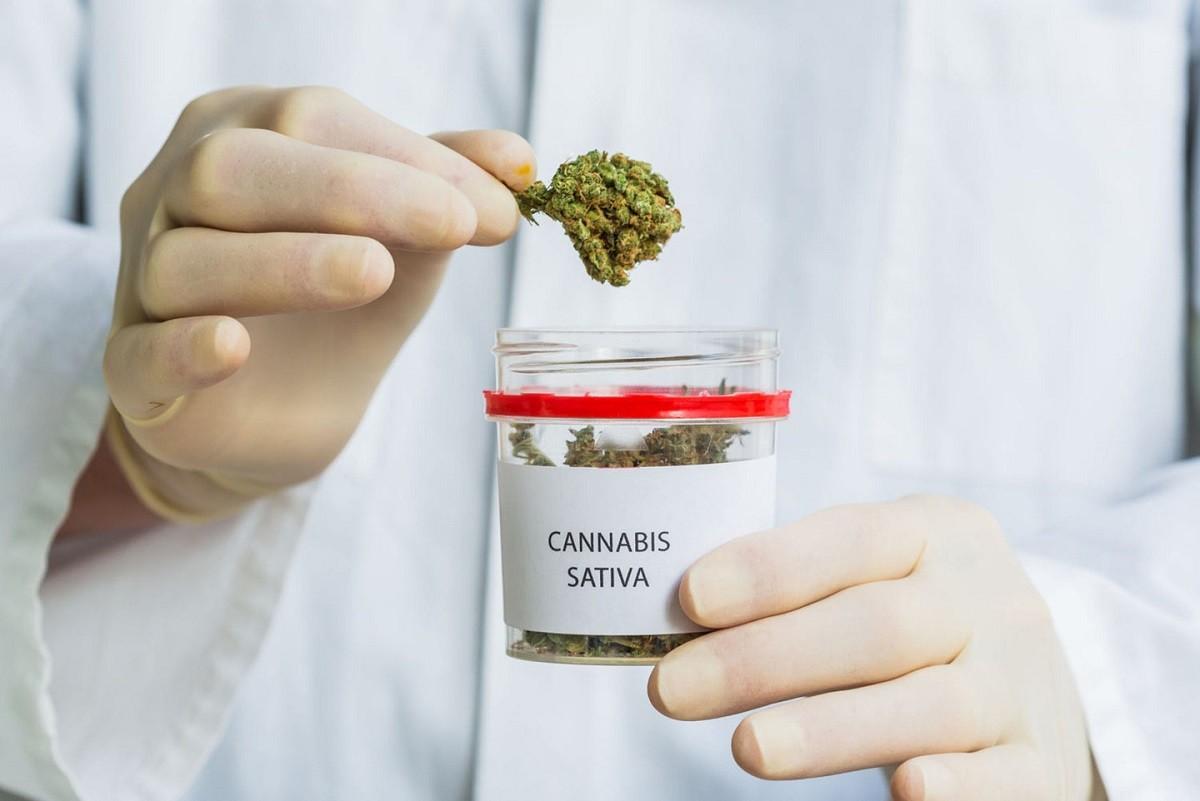 последствия употребления марихуаны
